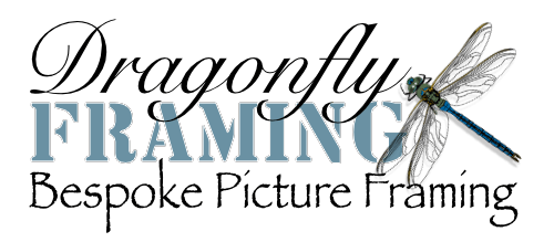 Quality Conservation Framing | Dragonfly Framing